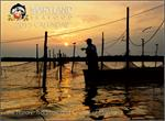 2015 Maryland Seafood Calendar Cover